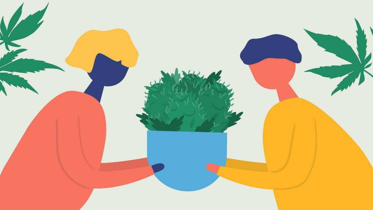 Unir las políticas del Cannabis a la Agenda mundial para el Desarrollo Sostenible: Vía privilegiada para lograr sociedades más justas y resilientes