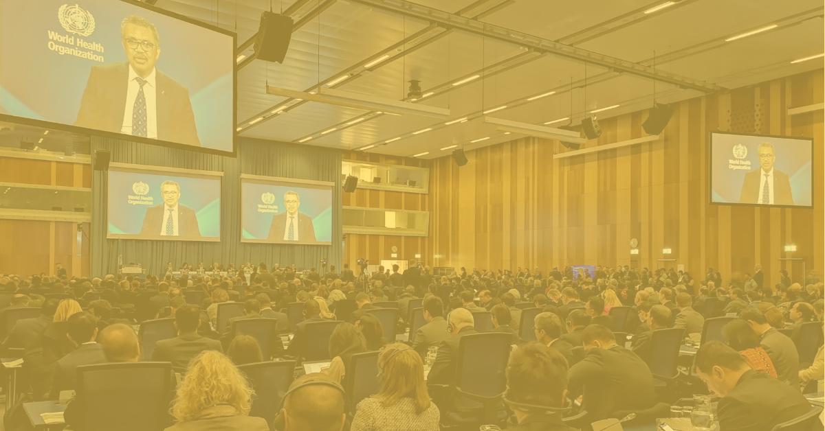 Umstufung von Cannabis bei den Vereinten Nationen. Zusammenfassung der 63.Tagung, zweite Zwischentagung.